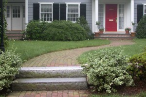 plant texture at front entry