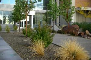 building entrance landscape