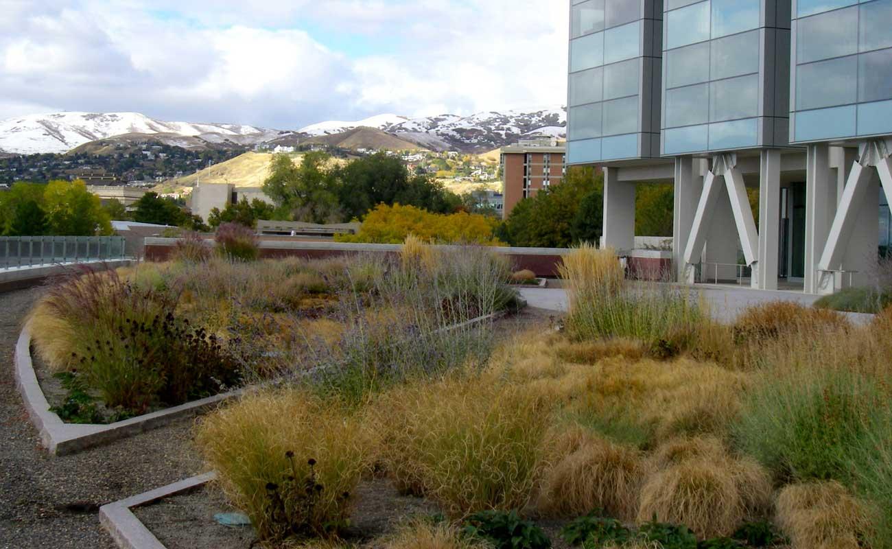 gravel pathways through perennial garden | G Brown Design