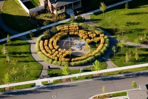 ornamental grass maze around playground