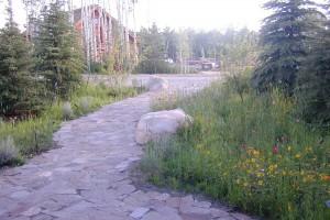 mountain home path