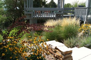 accent planting along path