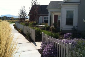 color and texture in landscape design