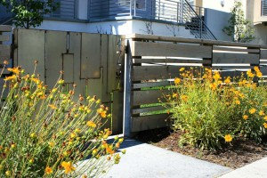 metal fence design with tickseed accents