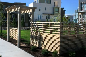 custom pergola and fence design