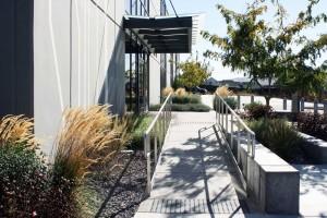 ADA ramp within landscape